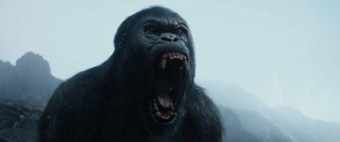 [Recensione] The Legend of Tarzan di David Yates: il Lord inglese ritorna nella giungla