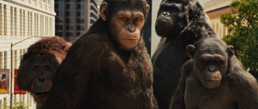 alba pianeta scimmie foto