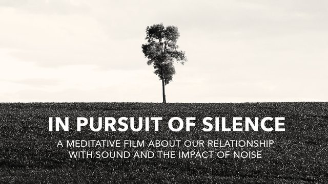 in pursuit of silence critica