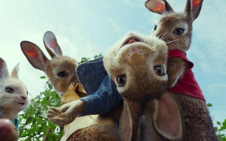 peter rabbit sequel