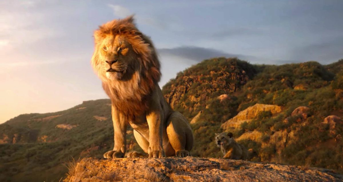 Il Re Leone Film Live-Action