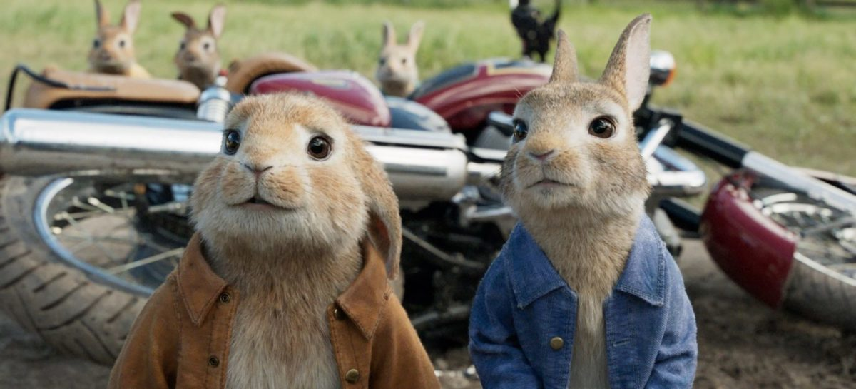 peter rabbit 2 film
