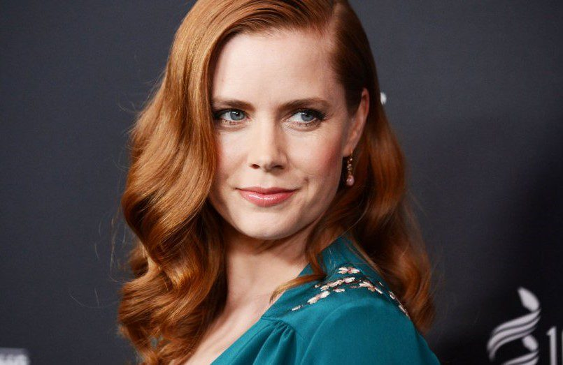 Kings of America: Amy Adams protagonista della serie Netflix