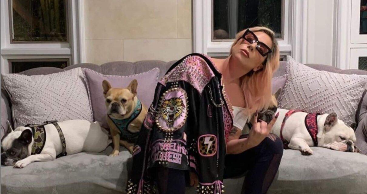 House of Gucci film lady gaga foto