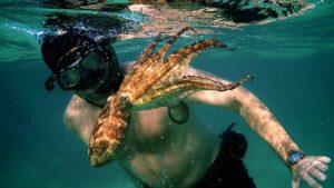 Il mio amico in fondo al mare, recensione del docu-film su Netflix